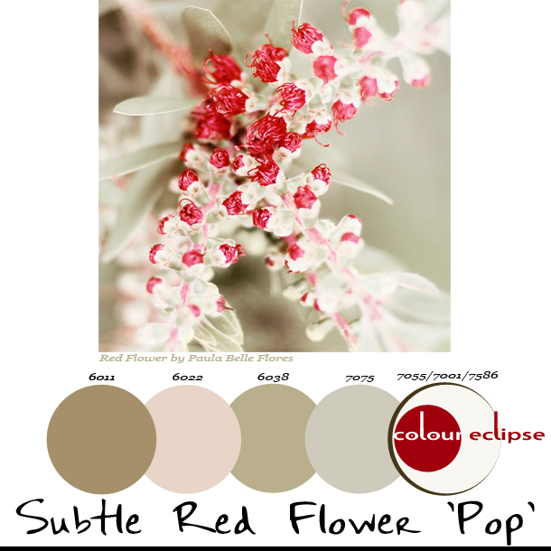 subtle-red-flower-pop-paint-palette
