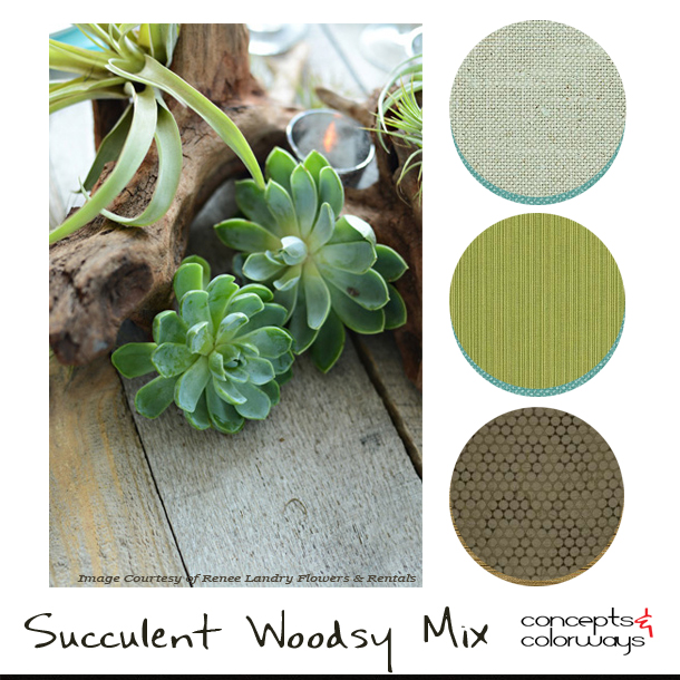 succulent-woodsy-mix-fabric-palette