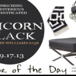 9.17.13-tricorn-black-color-of-the-day