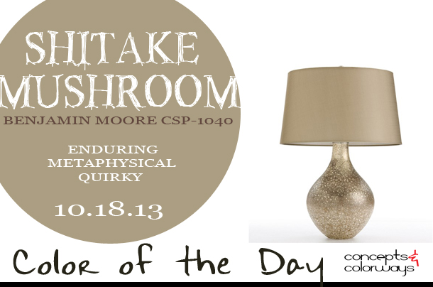 Color of the Day {Shitake Mushroom}