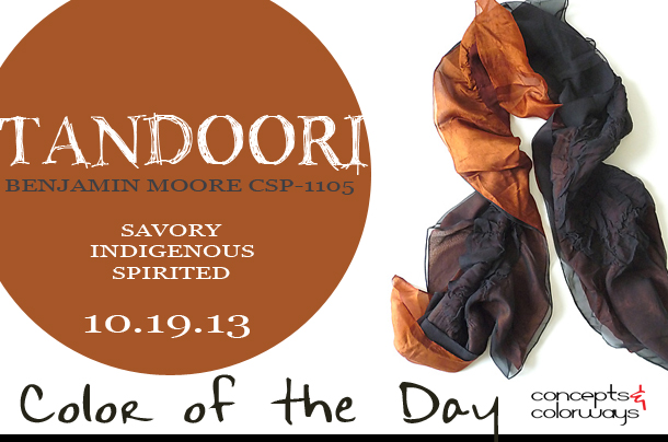 Color of the Day {Tandoori}