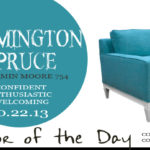 10.22.13-wilmington-spruce-color-of-the-day