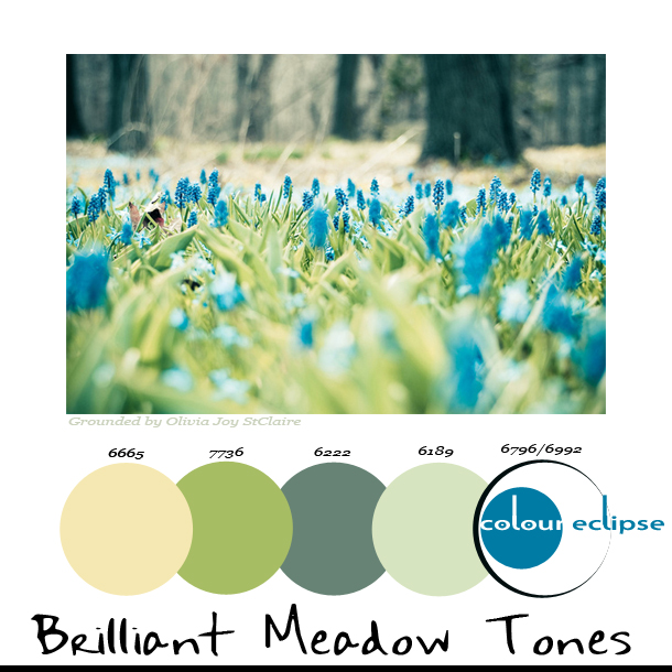 brilliant-meadow-tones-paint-palette