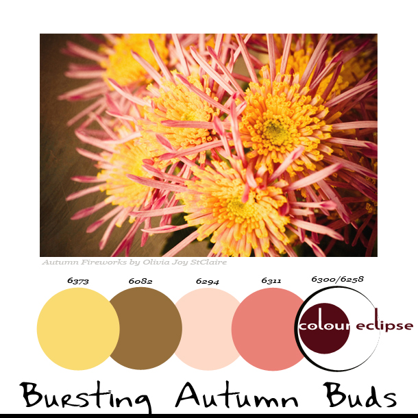 bursting-autumn-buds-paint-palette