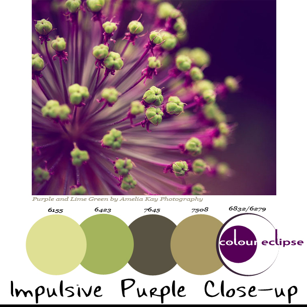 impulsive-purple-close-up-paint-palette