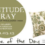 11.03.13-attitude-gray-color-of-the-day