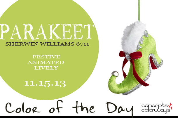 11.15.13-parakeet-color-of-the-day