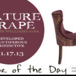 11.17.13-mature-grape-color-of-the-day
