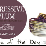 11.23.13-expressive-plum-color-of-the-day