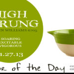 11.27.13-high-strung-color-of-the-day