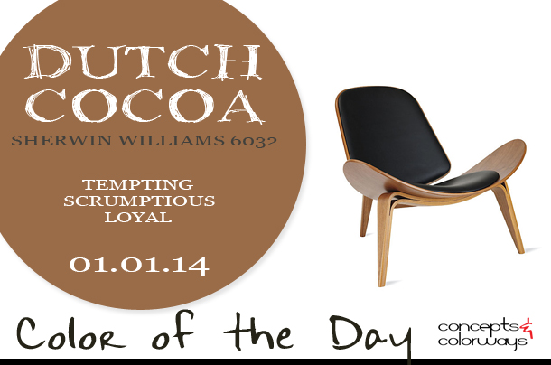 Color of the Day {Dutch Cocoa}