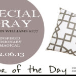 12.06.13-special-gray-color-of-the-day