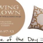 12.27.13-swing-brown-color-of-the-day