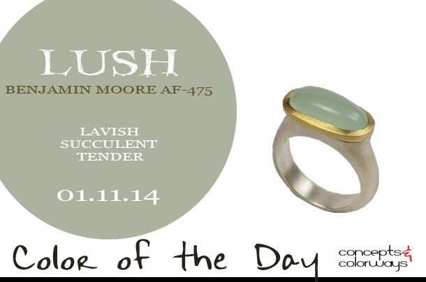 01.11.14-lush-color-of-the-day