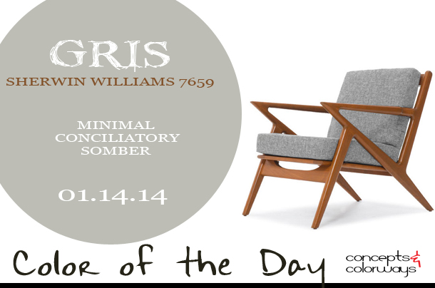 Color of the Day {Gris}