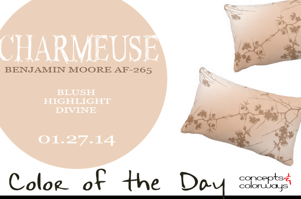01.27.14-charmeuse-color-of-the-day
