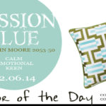 02.06.14-passion-blue-color-of-the-day