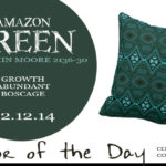 02.12.14-amazon-green-color-of-the-day