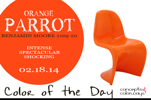 02.18.14-orange-parrot-color-of-the-day
