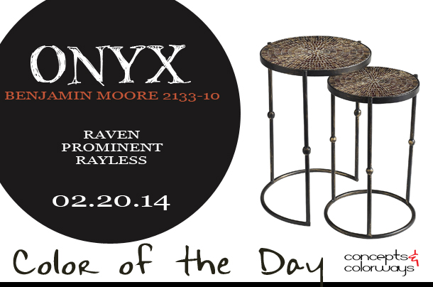 Color of the Day {Onyx}