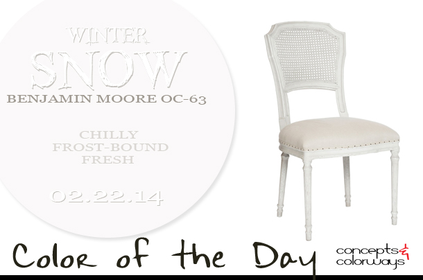 Color of the Day {Winter Snow}