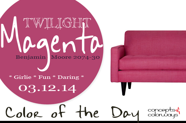 Color of the Day {Twilight Magenta}