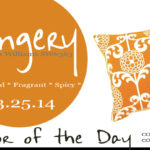 03.25.14-gingery-color-of-the-day