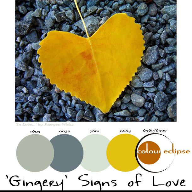 Paint Palettes {'Gingery' Signs of Love}