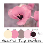 graceful-tulip-clusters-paint-palette