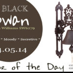 04.05.14-black-swan-color-of-the-day