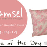 04.19.14-damsel-color-of-the-day