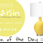 04.20.14-white-raisin-color-of-the-day