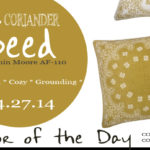 04.27.14-coriander-seed-color-of-the-day