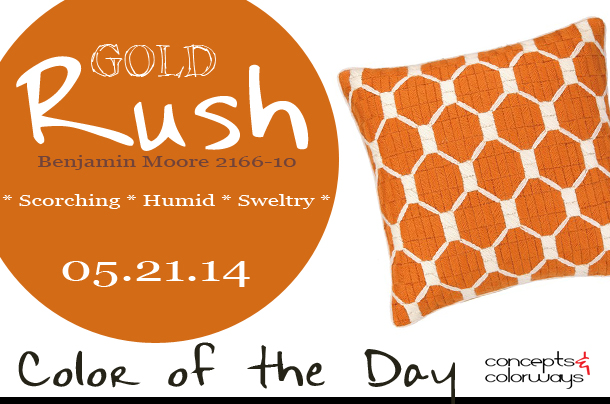05.21.14 Color of the Day, Gold Rush, Benjamin Moore 2166-10, burnt orange, bright orange, trina turk montebello canteloupe bargello pillow