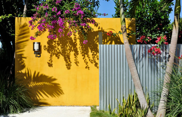 bright gold exterior wall, metal privacy screen, tree with purple flowers