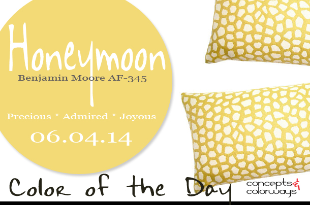 06.04.14 Color of the Day, Honeymoon, Benjamin Moore AF-345, honey yellow, butter-yellow giraffe print pillow