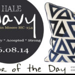 06.08.14-hale-navy-color-of-the-day