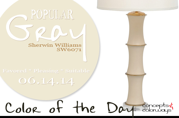 Color of the Day {Popular Gray}