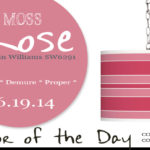 06.19.14 Color of the Day, Moss Rose, Sherwin Williams SW6291, rose pink, gray-pink, Eros pink bold stripe plug-in pendant, hot pink swag pendant