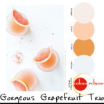 paint palettes, color palettes, color schemes, benjamin moore color combinations, grapefruit marguarita recipe, colour eclipse