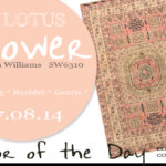 07.08.14-lotus-flower-color-of-the-day