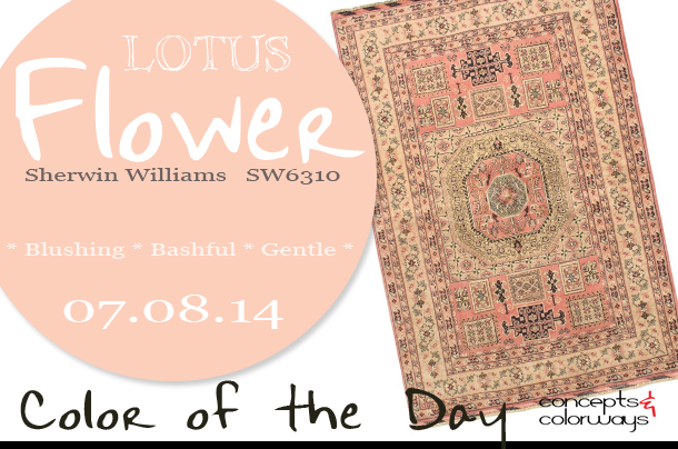 07.08.14 Color of the Day, Lotus Flower, Sherwin Williams SW6310, light pink, peachy-pink, hand knotted uzbek kargahi peach wool rug