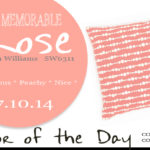 07.10.14 Color of the Day, Memorable Rose, Sherwin Williams SW6311, peachy-rose, pink, coral, apricot, pine cone hill surina coral decorative pillow