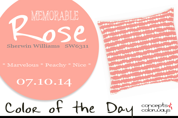 Color of the Day {Memorable Rose}