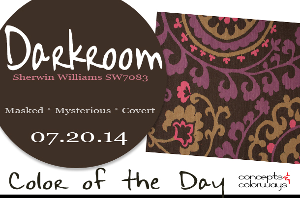 07.20.14 Color of the Day, Darkroom, Sherwin Williams SW7083