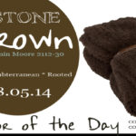 08.05.14 Color of the Day, Stone Brown, Benjamin Moore 2112-30, dark brown, barefoot dreams throw blanket cozychic espresso