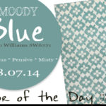 08.07.14 Color of the Day, Moody Blue, Sherwin Williams SW6221, blue-gray, CocoCozy Blossom Hand Knotted Rug