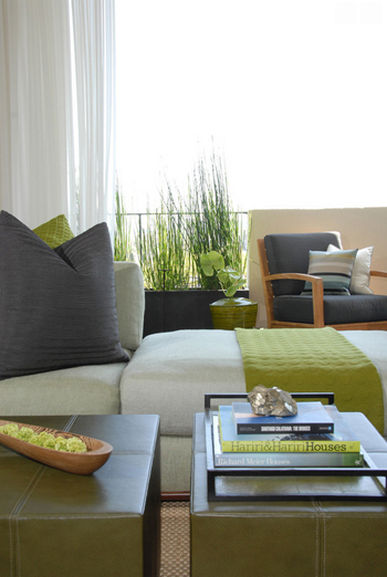 los angeles living room, greenish-gray sofa, green throw, gray accents