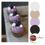 blueberry cupcakes with color palette