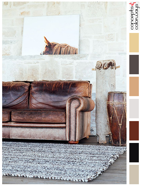 equestrian themed interior with color palette